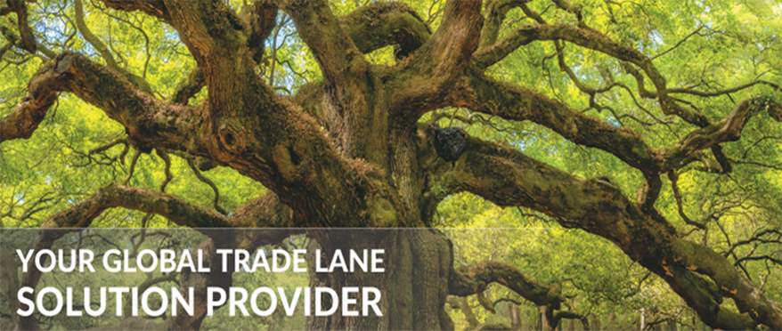 AsstrA Business - AsstrA is Your trade lane solution provider